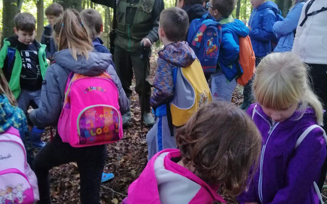 Gozd – naravoslovni dan, 2. razred